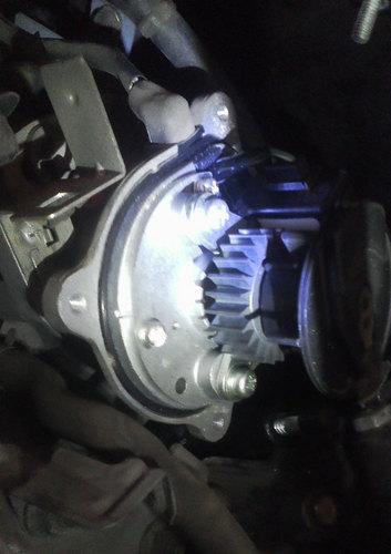 F1000016.jpg