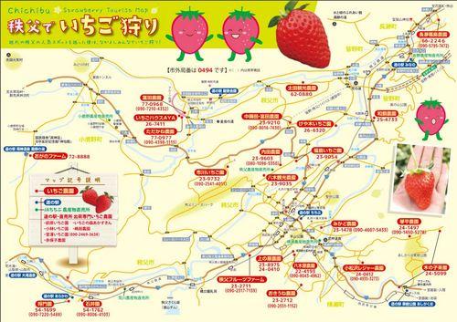 chichibu-ichigo02.jpg